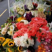 FVM Flowers